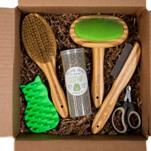 Short Hair Cat Grooming Set