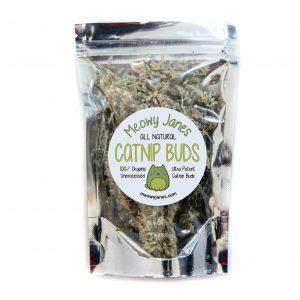 Catnip Buds